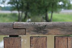 Un petit pont de bois sur la Centfons (Pi-F) Tags: bourgogne france rivière centfons citeaux pont bois poutre texture arbres dof composition vert nature parapet géométrie architecture eau