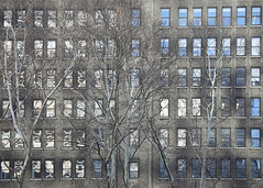 6P8A2393a (Photos by Bill Rendina) Tags: 42street ny nyc bryantpark manhatten