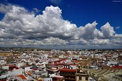 Un cielo sevillano - A Sevillian sky (ricardocarmonafdez) Tags: sevilla setas cityscape metropol parasol tejados roofs cielo sky blue azul nubes clouds buildings ciudad city architecture sunlight nikon 24120f4gvr d850