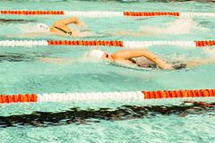 Kraul // Crawl (dietermschmitt) Tags: freiwasserschwimmendurlach2018 sgrkarlsruhe sscdurlach schwimmen sport turmbergbad sports swimming