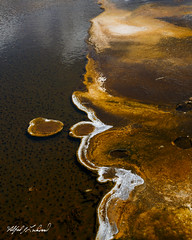 Blowing Bubbles_MG_0742 (Alfred J. Lockwood Photography) Tags: alfredjlockwood nature landscape abstract geothermalrunoff extremophiles thermophiles color texture patterns shapes summer microbialmat yosemitenationalpark wyoming