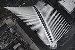 Manhattan's Oculus (jed52400) Tags: newyork manhattan financialdistrict oculus nyc lowermanhattan architecture