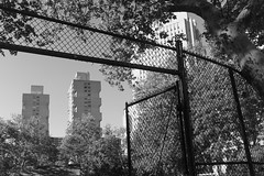 Columbus Park - Chatham Towers in the Background (Zach K) Tags: chatham towers poured concrete masonry design brutalism 1960s columbus park lower manhattan nyc new york city civic center area architecture background futurism kelly cruzen middle income housing multifamily fujifilm fuji x100f black white bw framed