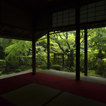 The Garden of Wabi / 詫の庭 thumbnail