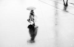 Umbrella Day (Hanno@deBoer) Tags: rain storm blackandwhite women umbrella street city bw rainy grey reflection arnhem holland light minimalistic minimal walk