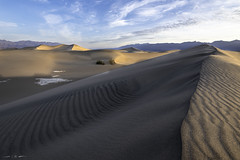 Superimposed Waves (courtney_meier) Tags: california deathvalley deathvalleynationalpark landscape mesquitedunes nationalpark usnationalpark clouds dawn desert dunes magichour morning morninglight ripples sand sanddunes shadows sunrise