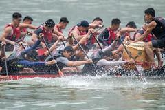 DBS Marina Regatta 2018 (BP Chua) Tags: dragonboat sport watersport action paddle dbsmarinaregatta blazethebay man men nikon d850 600mm