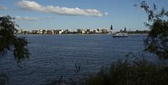 Gullspot (Padmacara) Tags: australia perth d750 nikkor24120 gull boat ferry water river sky clouds plants