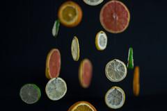 Suspensión cítrica (fanycidad) Tags: fruit fruits orange lemon lime colorful composition contrast original artistic