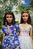 Сестры002 (medvedka8) Tags: fashion royalty rayna ahmadi
