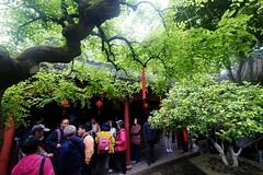 (lhongchou's photography) Tags: suzhou jiangsu jiangnan china xt1 fuji fujifilm fujifilmxf1024mmrois
