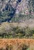 Cachoeira da Farofa (Johnny Photofucker) Tags: serradocipó minasgerais mg cachoeiradafarofa parquenacional lightroom cerrado brasil brasile brazil cachoeira cascata waterfall 100400mm paisagem landscape nature natura natureza