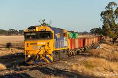 Nearing Narromine (Henry's Railway Gallery) Tags: 8206 82class emd diesel clyde pn pacificnational oretrain freighttrain narromine 8428n 8428