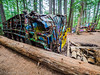 _6031670 (Hyperfocalist) Tags: canada british columbia spring 1956 train wreck monument painted graffiti wagons woods forest trees bent mangled