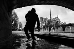 Notre-Dame de Paris (Mustafa Selcuk) Tags: parismaville noir sb siyahbeyaz moody parisien paris bridge street streetphotographer streetphotography xt2 fujifilmfrance fujifilmtr fujifilm noiretblancphotographie noiretblanc bwphoto bw bnw blackandwhite eglise church notredame notredamedeparis