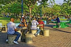 _MG_9583_DxO (carrolldeweese) Tags: emancipation park kingston jamaica