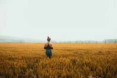 Girl In A Wheat Field (SplitShire) Tags: landscape sky food nature wheat people field plant grass rural yellow grain standing outdoors farm outdoor morning agriculture person human countryside flora grassland cereal large crop cropland grassfamily grassy prairie