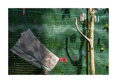Saga ordinaire (hélène chantemerle) Tags: clôture pincesàlinge serpillière ombres lumière fenced clothespins mop shadow light green