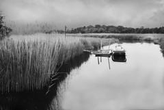 R1-047-22 (David Swift Photography) Tags: davidswiftphotography newjersey eggharbortownship atlanticcounty creeks water marsh wetlands boats boatalone docks nature 35mm film ilfordxp2 nikonfm2