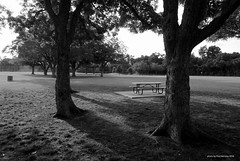your table is waiting (mono) (pvh photo) Tags: picnic table da16454 monochrome
