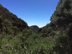 senderismo Cabecera del Barranco de Guayadeque Gran Canaria 02 (Rafael Gomez - http://micamara.es) Tags: senderismo cabecera del barranco de guayadeque gran canaria