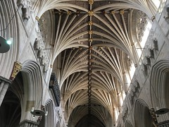 Ceiling in Exeter Cathedral