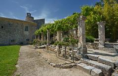 Le jardin de l'Abbaye Saint-Hilaire (2) – Vaucluse (Cri.84) Tags: abbayesainthilaire abbaye jardin vaucluse provence