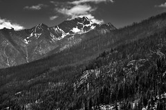 When I Look To The Mountains (Black & White, Lake Chelan National Recreation Area) (thor_mark ) Tags: azimuth185 bearcatridge blackwhite blueskies bluesskieswithclouds boatride boatridetostehekin bonanzamassif canvas capturenx2edited cascaderange centralnorthcascades chelanmountains colorefexpro day4 emeraldpeak evergreentrees evergreens ferryride hillsideoftrees ladyofthelake lakechelannationalrecreationarea landscape lookingsouth lucernemountain mountainpeaks mountains mountainsindistance mountainsoffindistance mountainside nature nikond800e northcascades northcascadesnationalparkservicecomplex northchelanmountains outside pacificranges partlycloudy pinnaclemountain portfolio project365 rollinghillsides saskapeak silverefexpro2 snowonfaroffmountainpeaks snowcapped sunny trees triptonorthcascadesandwashington lakechelannationalrecreation washington unitedstates