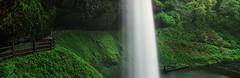 South Falls (Zeb Andrews) Tags: fuji160c fujig617 silverfallsstatepark waterfall landscape expiredfilm 6x17 pano panoramic oregon pacificnorthwest filmphotography mediumformat longexposure southfalls spring green kodakhr500 scannedatbluemooncamera