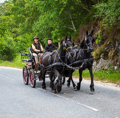 Horses & Carriage at Silver Sands, Morar 8303 (Mike Thornton 15) Tags: silversands morar scotland horsescarriage