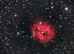 NGC5146 - The Cocoon Nebula (Twisted Astro) Tags: astronomy astrophotography space stars night nebula cocoon ic telescope stargazing pic heavens light pollution pixinsight lightyears deepspace photo dso