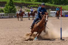 JBC_6226.jpg (Jim Babbage) Tags: krahc bethany appaloosa horses horseshow 2018