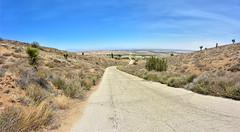 Tierra Subida Avenue (joe Lach) Tags: tierrasubidaavenue narrowroad mojavedesert mohavedesert antelopevalley california bluesky joelach
