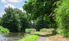 Bridgewater Canal, Daresbury (joanjbberry) Tags: landscape fuji water bridgewatercanal xt2 daresbury warrington canal
