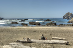 enjoying Bandon with dogs (maryannenelson) Tags: oregon shoreline coast beach rocks landscape animals bluesky