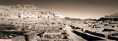 The antiquities of El Tarif (DelioTO) Tags: 6x17 antiquities architecture blackwhite cemetery desert egypt f267 historical holiday panoramic pinhole toned trip winter