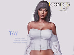 TAY_BANNER (Neveah Niu /The ICONIC Owner) Tags: iconic iconichair hair hairsl hairstyles tres chic wisp neveahniu secondlife zbrush blender photoshop 3dmesh original meshhair art multimedia white black ethnic tay