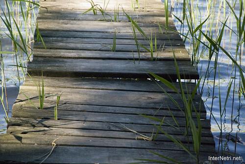Шацький Національний Природний Парк Озеро Пісочне  МІстки InterNetri  Ukraine 134