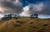 Treeline (Phil-Gregory) Tags: national naturalphotography naturephotography naturalworld nationalpark countrylife countryside nikon d7200 tokina dovedale derbyshire peakdistrict colours colour wideangle ultrawide