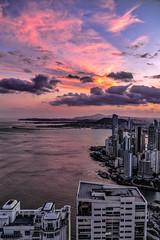Panama Colors (Bernai Velarde-Light Seeker) Tags: panama city urban dusk dawn sunset sundown buildings apartments centralamerica bernai velarde exploration hightrise