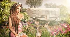 Beautiful (Luane Meo) Tags: ersch beo shinyshabby clawtooth catwa maitreya larahurley ikon tarte jian uber hpmd 3dtrees {anc}