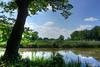 Dorfteich (klausi56) Tags: teich tümpel dorf ufer wolken grün