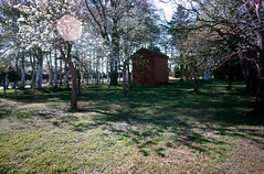 Shiseki park (threepinner) Tags: mamiya universal press sekor 50mm f63 positive iso100 selfdeveloped uryu hokkaidou hokkaido northernjapan japan summer park 雨竜町 史跡公園 北海道 北日本 日本