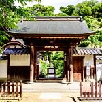 Gate of Shoreiin in Engakuji Temple, Kamakura : 北鎌倉・円覚寺 松嶺院 thumbnail