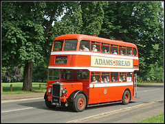 ANH 154, Park Avenue South (Jason 87030) Tags: nct 154 daimler adamsbrad abingtonpark event transportday ride trip red wheels bus classic vintage heritage old anh154 corporation transport northampton northants northamptonshire june 2018 cvg6
