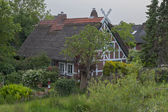 Altes Land 31052018 403 (Dirk Buse) Tags: grünendeich niedersachsen deutschland deu germany altes land de norddeutschland reetdach garten natur nature outdoor haus wohnhaus mft m43 mu43 grün
