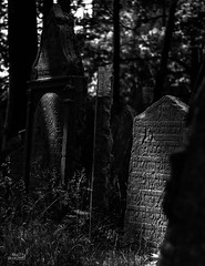 Josefov-Cementerio_11-BN (byJMdF) Tags: 2007 año canoneos30d cámara eventos lugares praga vacaciones viaje prague luz natural barrio judío josefov jude jewish juive juif cementerio lápidas tumba cemetery tombstones stone cimentière stèles de pierre