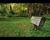 at the forest edge (Gordon Hunter) Tags: forest woods country rural grass green post mailbox mail cabin shed house bush trees abandoned derelict decay special gordon hunter bradner bc canada nikon d5000 mountlehman hb