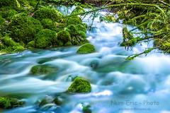 Nikon D850  AF-S 24-70 VR  f/2,8 (Num-Eric) Tags: rivière forêt arbre eau cascade chute pêche courdeau mousse biotope nature naturel tronc feuille racine