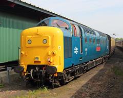 Wait in turn (Treflyn) Tags: class 55 deltic 55019 royalhighlandfusilier carriage shed kidderminster severn valley railway svr diesel gala